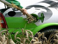 Biofuels are Helpful but no Panacea for Relieving America's Dependence on Oil