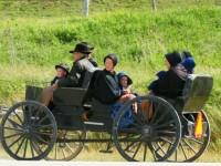 Republicans and the Mennonite Vote