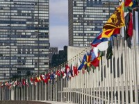 Why Not Firm Call for UN Reform?