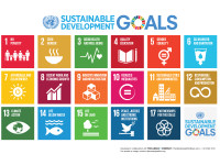 The Missing Ingredient in UN's 2030 Global Goals