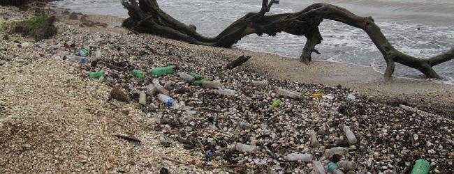 Kick the Plastic Habit