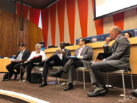 UN Panel: Where Are We Heading? Visions and Projections for the Future of the SDGs