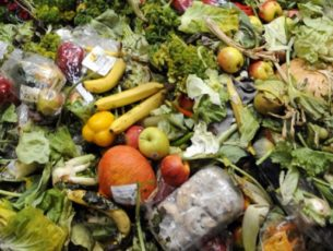 Wasted Food is a Factor that Remains Noticeably Absent from the Climate Change Discourse