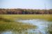 Vermont Wetlands Management