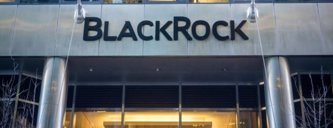 BlackRock is Smart to Prioritize the Climate – and Business Leaders Know It. So What Are They Waiting For?