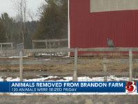 Town Passes Animal Control Ordinance