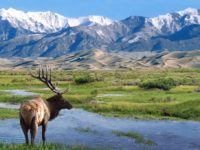 Protecting Federal Lands Should be a No-Brainer